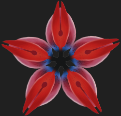 kemo 5 pointed flower.png